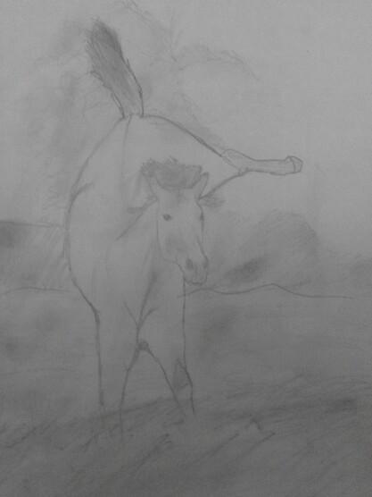 Concour de Alicoux horse