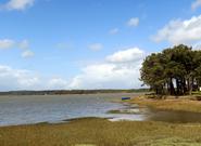 Bretagne mai 2014 (4) - Etel