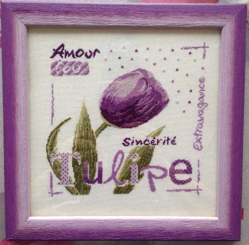 La tulipe de Lilipoint