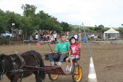 journée nationale de l'attelage de loisir 2013