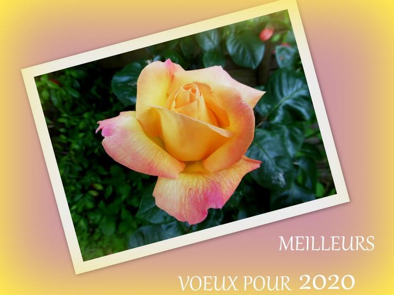 MEILLEURS VOEUX POUR 2020 !!