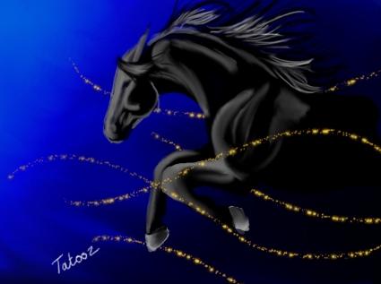 cheval noir avec gimp