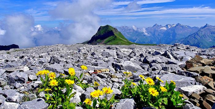 Bonjour....      montagne et pierres - Haute-Savoie