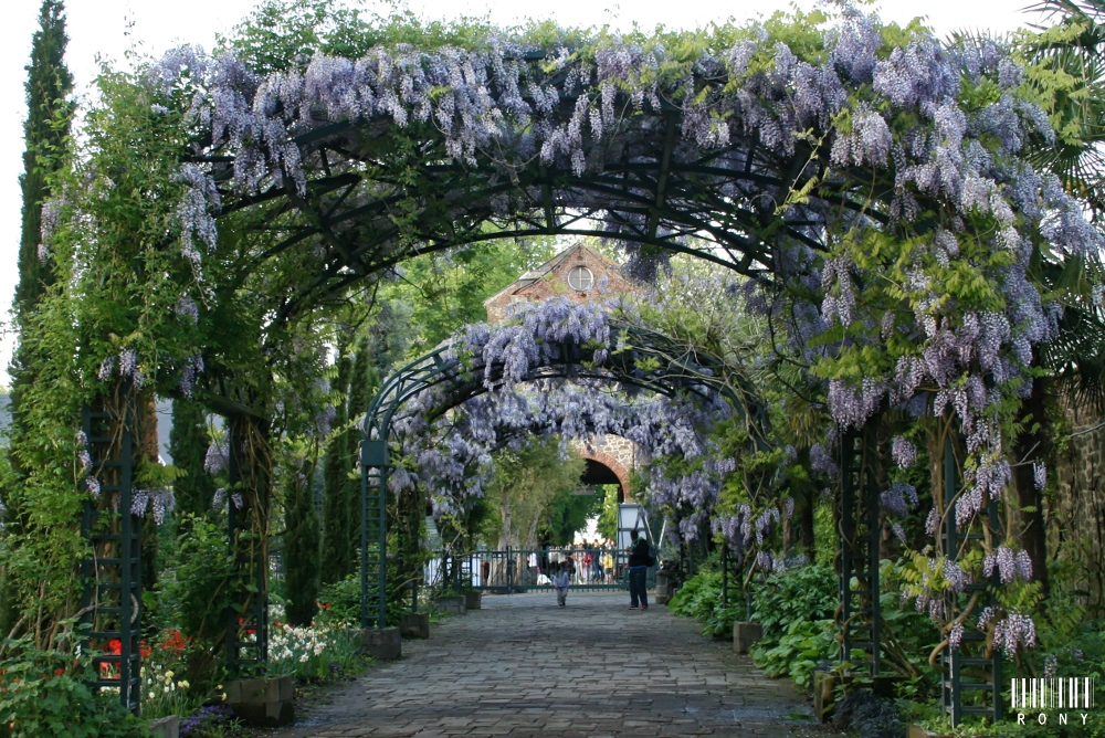 Jardin Andalou : Printemps 2015