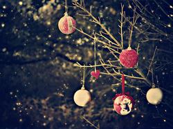 Enfin, Décembre.
