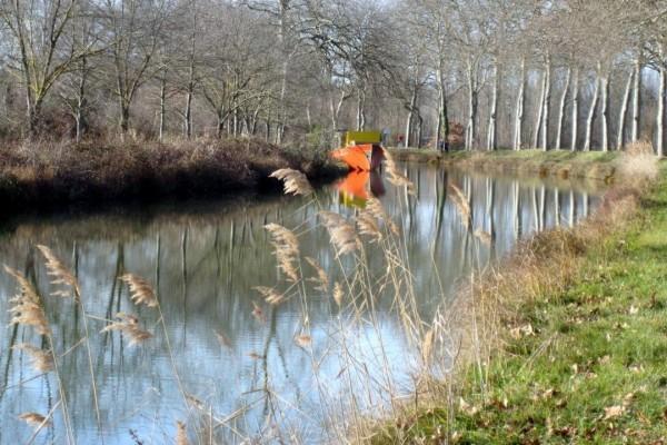 T5 - Bord du canal