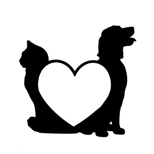 petit format chien , chat