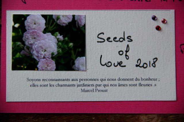 Seeds of Love 2018 : du bonheur dans la boîte aux lettres ! (5)