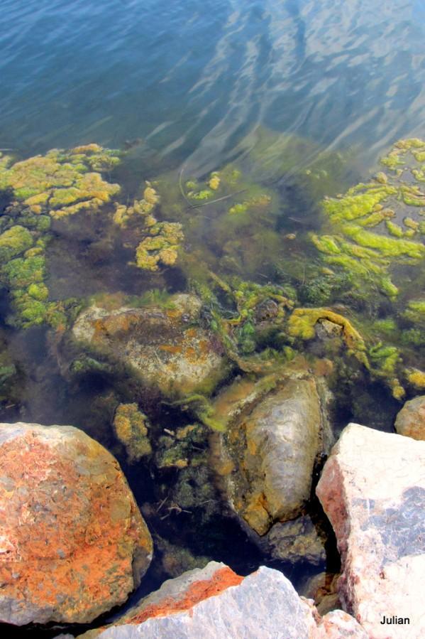 fz06 - bord de l'eau 3