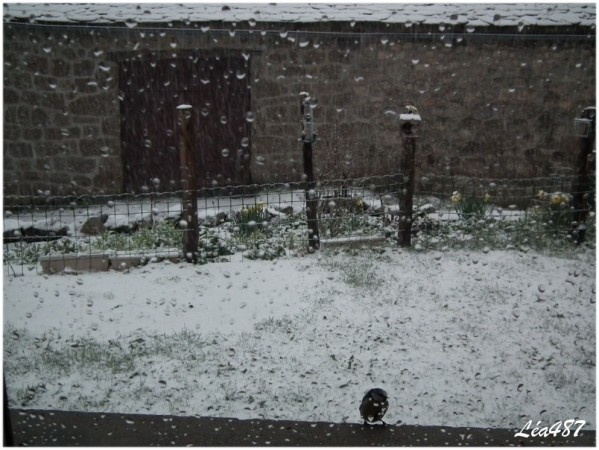 DSCF1546-neige-10-avril-18h43.jpg