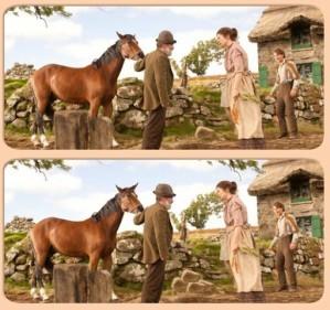 Spot 6 diff - War horse