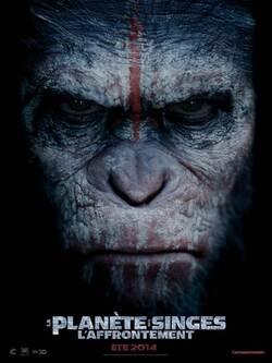La planète des singes : l'affrontement, le 30 juillet 2014 au cinéma : découvrez la bande-annonce teaser !