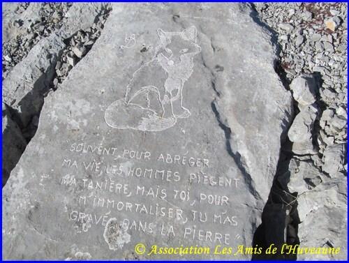 Les pierres gravées du Garlaban