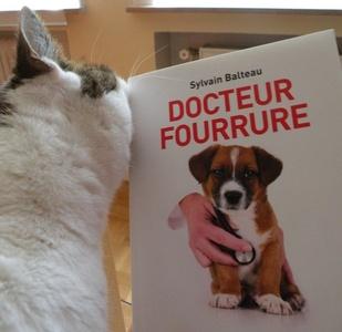 Lecture : Docteur Fourrure, Sylvain Balteau