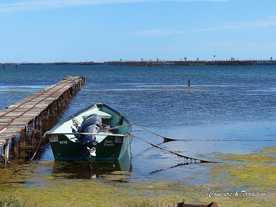 Autour de l'étang de Thau