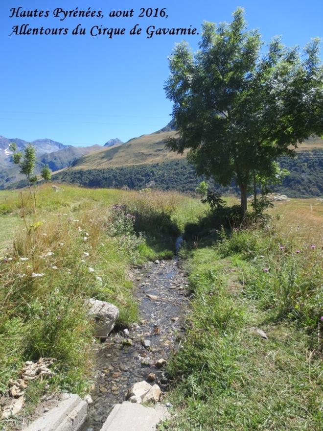Hautes Pyrénées, aout 2016, Allentours du Cirque de Gavarnie