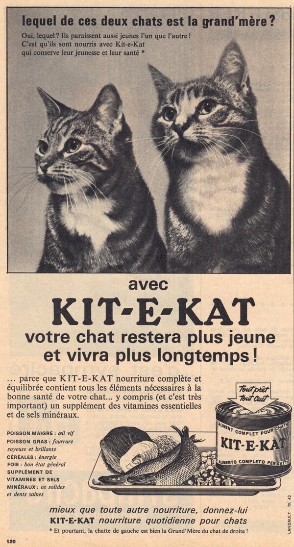 Publicité Kit et Kat qui est la grand mère