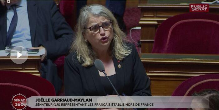 Allocation aux harkis : la colère  des sénateurs contre le gouvernement