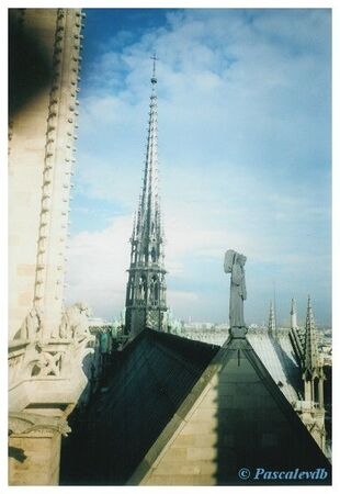 Notre_Dame___les_toits6