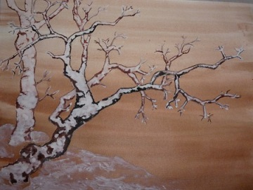 Les arbres, l'hiver ...