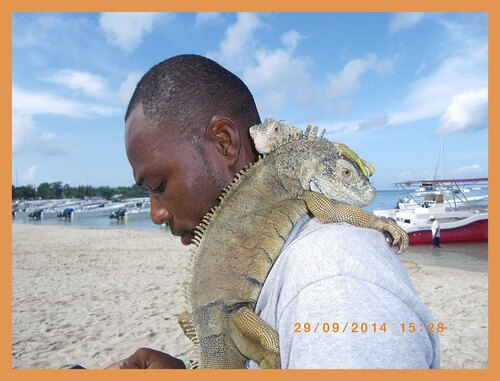 NOTRE VOYAGE EN REPUBLIQUE DOMINIAINE