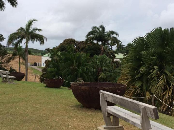 En Martinique...