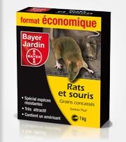 Mort aux rats - www.gammvert-saintjeandangely.com