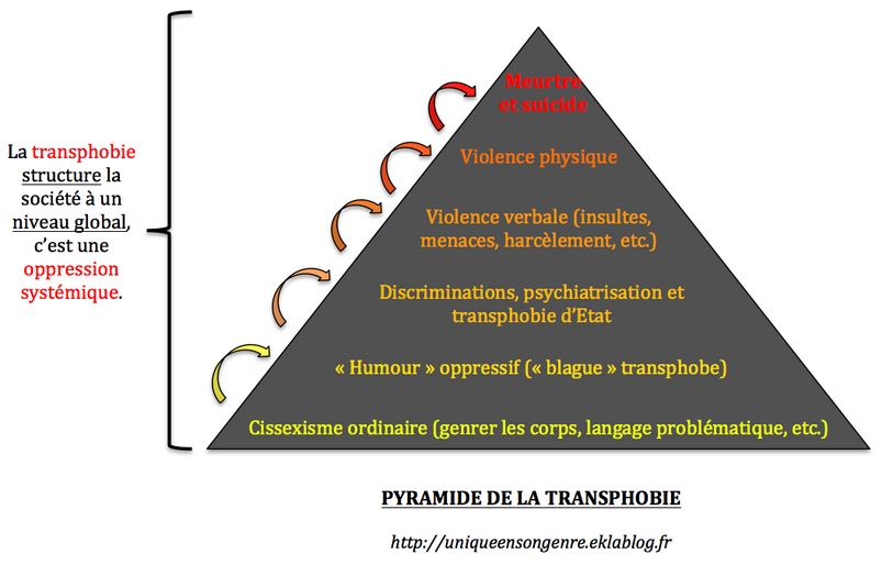Approche matérialiste de la transidentité et enbyphobie