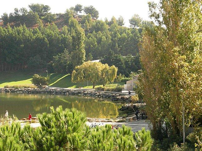 L'étang de l'Olivier et le parc Ste Catherine (12)