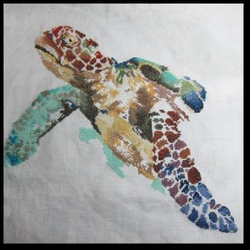 La longévité de la tortue (4)