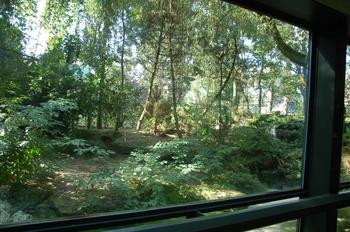 dierenpark emmen d50 107
