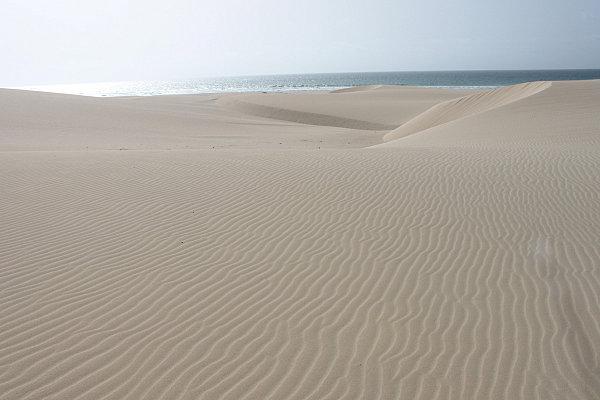 Boa Vista, l'île aux dunes7