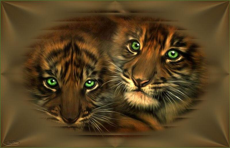 Fonds tigrons