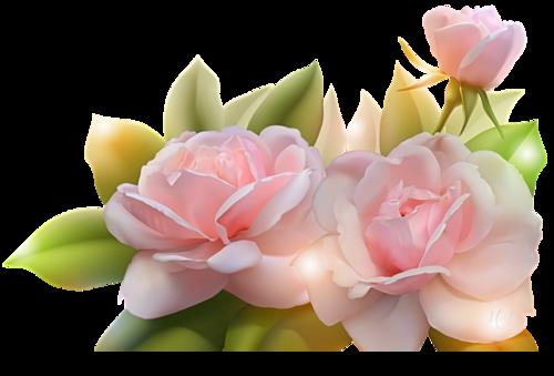 ♥ La rose d'amour  ♥
