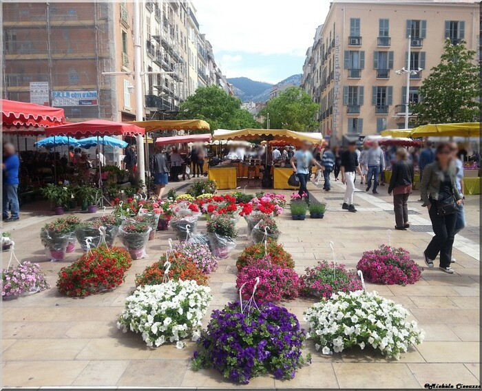 Visite de la ville de Toulon