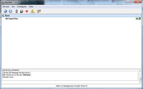 Configurer un serveur Murmur