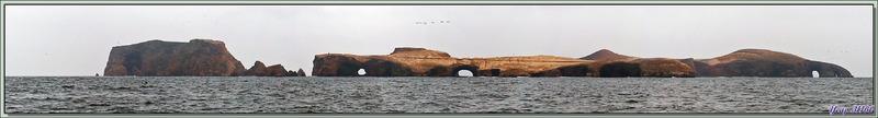Vue panoramique des îles Balestas et de leurs falaises percées - Paracas - Pérou