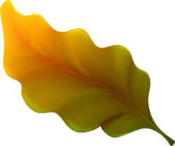Nature, feuilles, fleurs, arbres