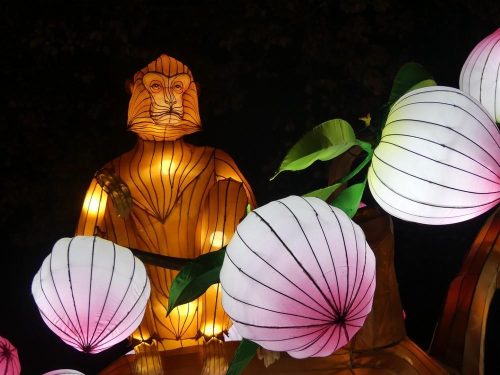 Les animaux de la savane Africaine au Festival des lanternes chinoises de Gaillac...