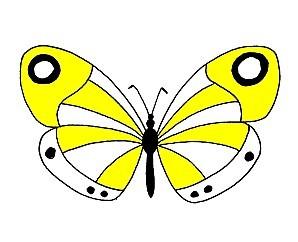 papillon-jaune.jpg