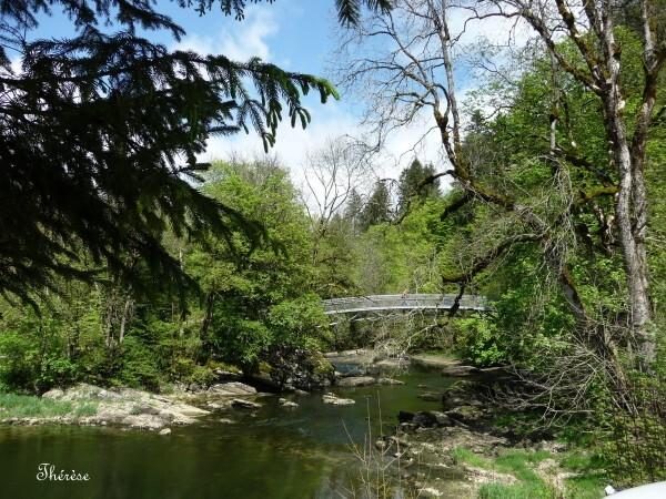 Saut du Doubs (130)