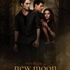 Affiche New Moon 01