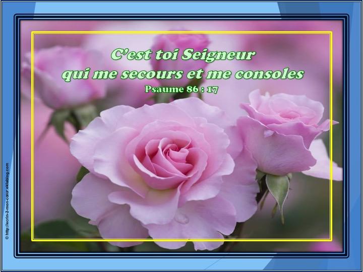 C'est toi Seigneur qui me secours - Psaumes 86 : 17