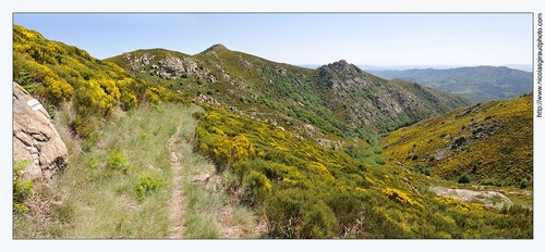 Vallée du Lignon & Massif du Tanargue