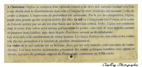 Chênehutte-Trèves-Cunault - Maine et Loire - Pays de Loire - 4 Juillet 2015