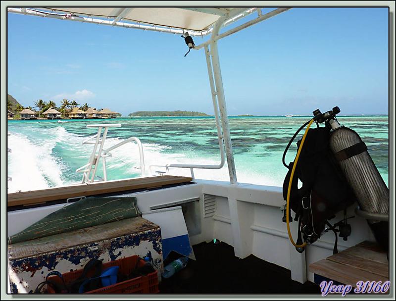 Départ en plongée - Moorea - Polynésie française