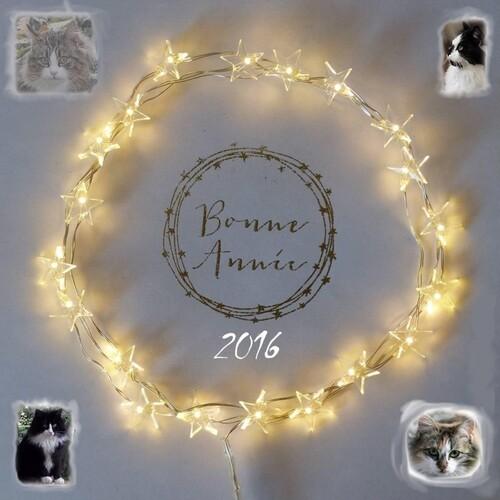 BONNE ANNEE 2016 !!!!