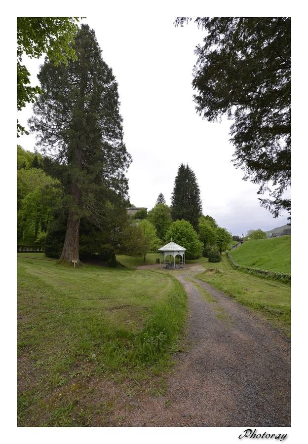 Vic sur Cère - Cantal - Auvergne - 01 Mai 2015