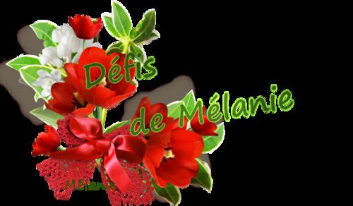 Défis de Mélanie du Mois de novembre 2016