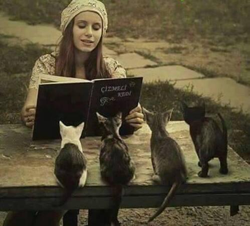 10 - Des chats, des hommes, femmes, enfants et des livres